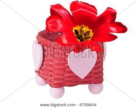Flower In Basket