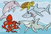 picture of dauphin  - Cartoon Illustrations of Funny Sea Life Animals and Fish Mascot Characters Group - JPG
