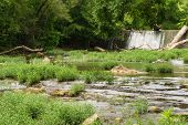 picture of brook trout  - Water flowing over a dam on a rural trout stream in Virginia - JPG