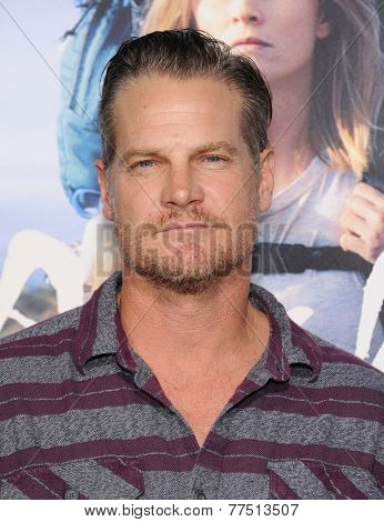 LOS ANGELES - NOV 19:  Brian Van Holt arrives to the
