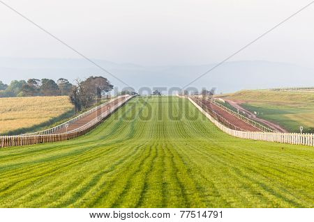 Horse Racing Training Tracks
