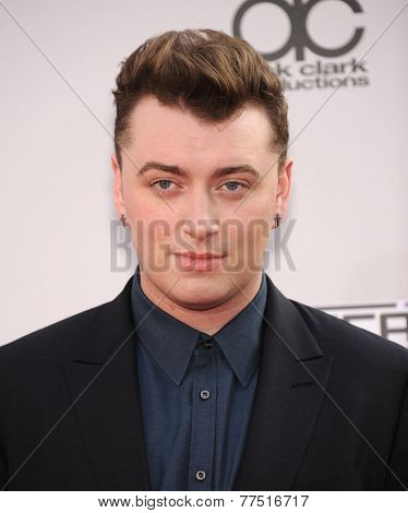 LOS ANGELES - NOV 23:  Sam Smith arrives to the 2014 American Music Awards on November 23, 2014 in Los Angeles, CA