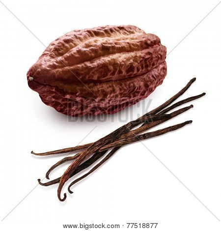 Cacao and vanilla pods isolated on a white background