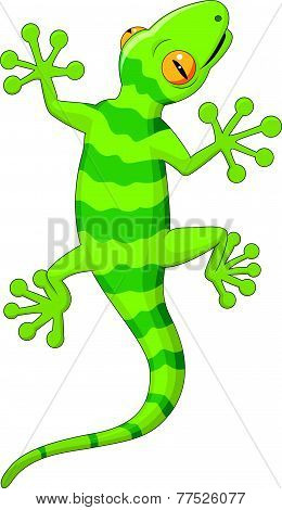 Cartoon gecko