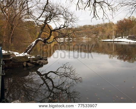 Van Cortlandt Park In Winter