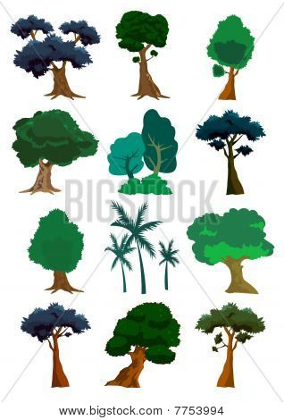Trees Illustration In Vector