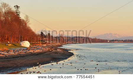 City Of White Rock And Mt. Baker