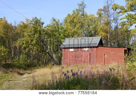 Red hut, warehouse in the mountain forest, birch and rowans.