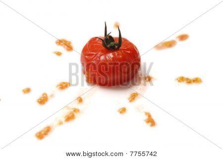 Tomato Splat