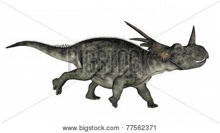 Styracosaurus dinosaur running - 3D render