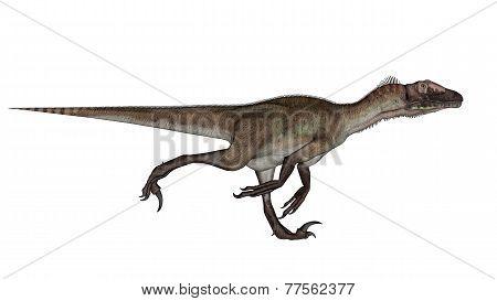 Utahraptor dinosaur running - 3D render