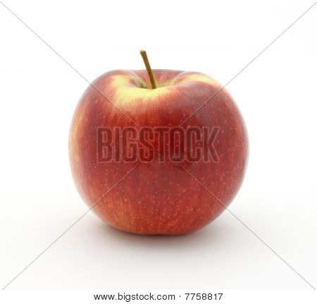 Empire apple on white background