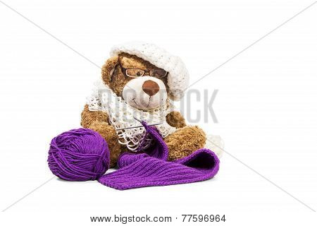 Teddy Bear Knitting A Scarf