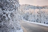 picture of icy road  - Heavy branches covered with ice and snow near scenic winter road through icy forest after snowfall - JPG