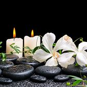 stock photo of tendril  - beautiful spa concept of blooming white hibiscus twig with tendril passionflower and candles on zen basalt stones with drops  - JPG