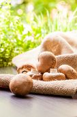 picture of agaricus  - Fresh brown whole uncooked Agaricus mushrooms on a hessian sack one of the most cultivated edible mushrooms in the world and a popular ingredient in savory and vegetarian cooking - JPG