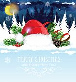 picture of winterberry  - Santa Hat in the night snow covered forest - JPG