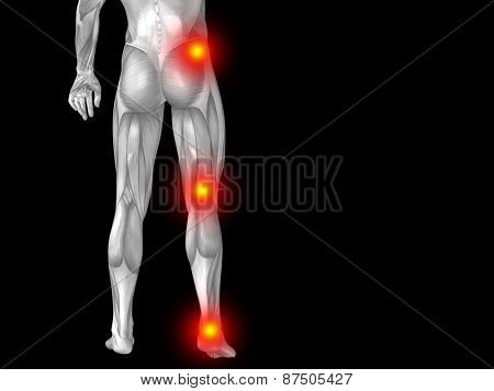 Conceptual 3D human man anatomy lower body or health design, joint or articular pain, ache or injury isolated on black background