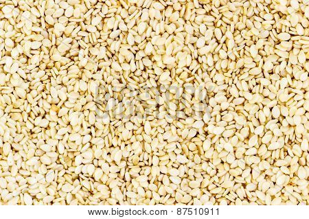 close-up of white coloured sesame seeds background