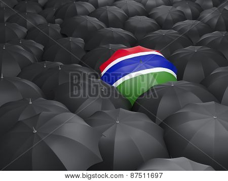 Umbrella With Flag Of Gambia