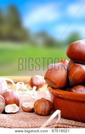 Group Of  Hazelnuts On A Wooden Table In Field Vertical Composition
