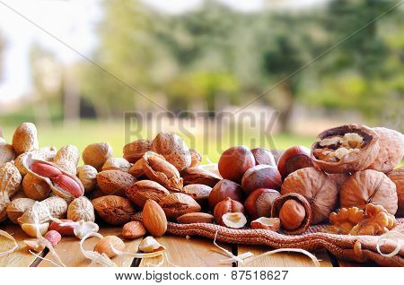 Tasty Nuts On A Wooden Table In Field Front View