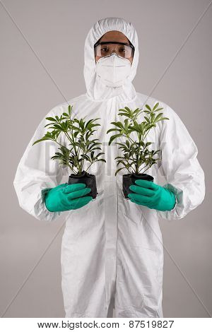 Scientist with two plants