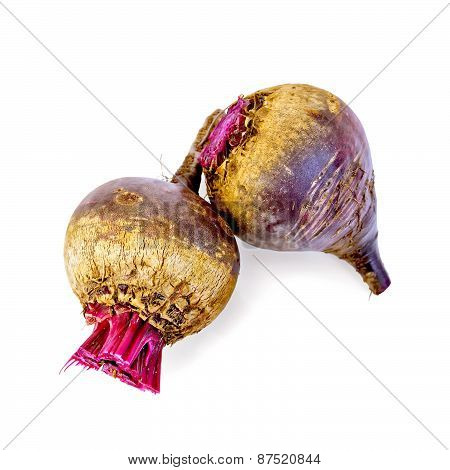Beet whole two