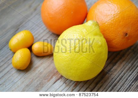 Set of citrus fruits from tangerines, kumquats, oranges and lemons