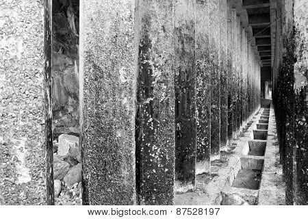 Corridor Of Concrete Pillars Black And White