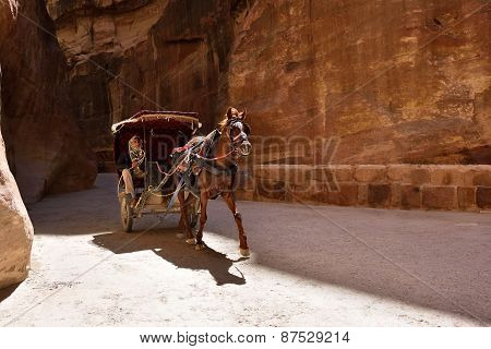 Horse Carriage In Siq Canyon, Petra, Jordan