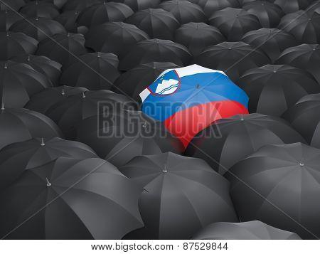 Umbrella With Flag Of Slovenia