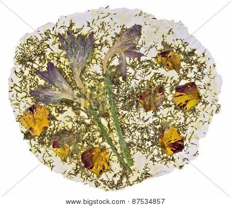 Natural Paper Made From Dried Flowers