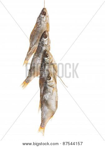 Tasty Fish On A Rope Vertically