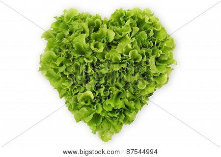 heart shaped salad lettuce on white background