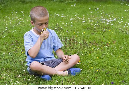 Young Boy Sitting In A Meadow, Smelling A Bunch Of Wild Flowers