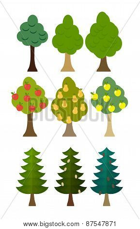 set Tree icon fruit trees, conifers, forest trees. Vector illustration