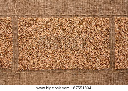 Wheat Grains On Sackcloth, With Place For Your Text