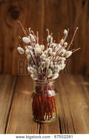 Bouquet Of Pussy Willow Twigs In Glass Jar On Wooden Background