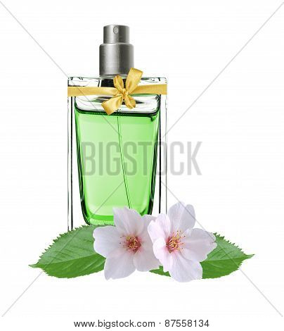 Women's Perfume In Beautiful Bottle And Jasmine Flowers Isolated On White
