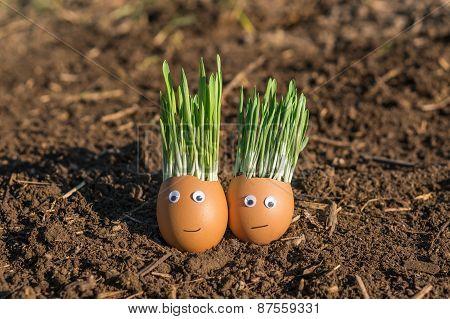 Happy Eggs In Love