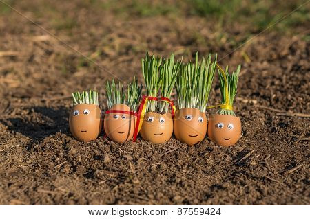 Happy Egg Family