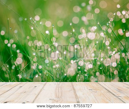 Wet Springtime Grass With Bokeh Effect And Wooden Floor..