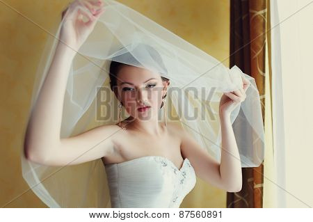 Portrait Of Young Woman In Wedding Dress Posing With Bridal Veil