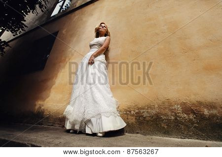 Bride Posing On The Background Wall