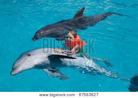 Little Girl And Two Dolphins In Swimming Pool