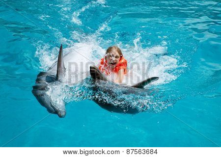 Happy Little Girl Riding Two Dolphins In Swimming Pool