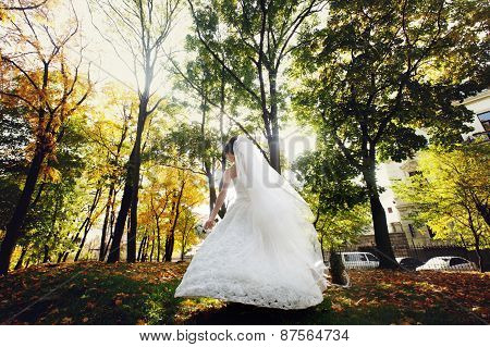 Bride With A Bouquet Standing In The Sun In The Park