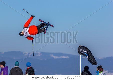Jesper Ahlén, Swedish skier