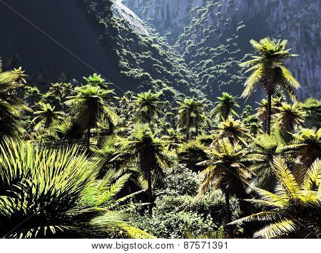 Beautiful rainforest with palm trees